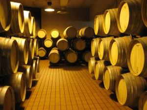 Montevibiano's red wine is stored in these wooden barrels called barriques to further ferment and to enhance the flavor.