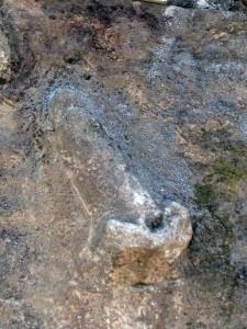 Phallic directional symbol?  Oh Pompeii...
